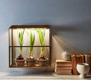 Greenhouse Light Controller